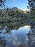 Girraween NP & Mt Barney